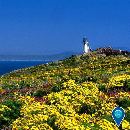 photo of a lighthouse in channel islands