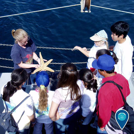 photo of teacher holding a seastar showing students