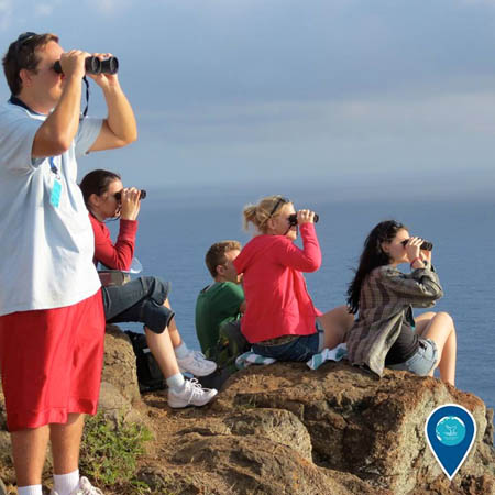 photo of people holding binoculars looking for whales