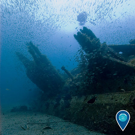 photo of a shipwreck with schools of fish around it