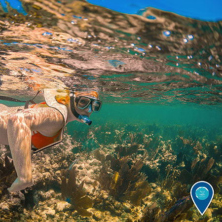 photo of a woman snorkeling and coral beneath her