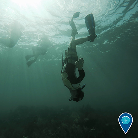 National Marine Sanctuaries are spectacular places to dive and snorkel