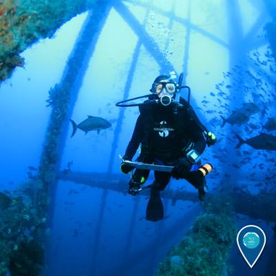 diver holding a clipboard swimming among fish in the flower garden banks national marine sanctuary