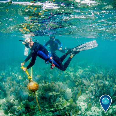 two divers checking a mooring buoy in the florida keys national marine sanctuary