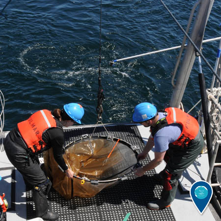 ship crew preparing a net to put in the water