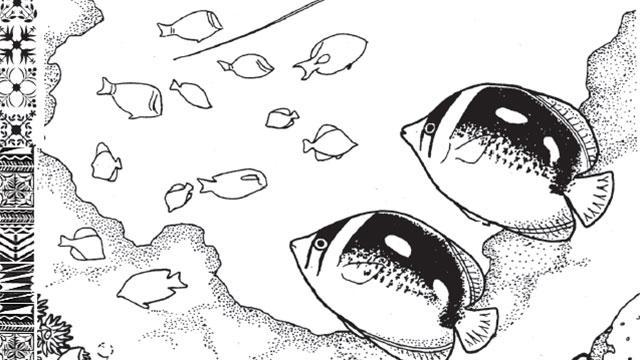 Illustration Of Angel Fish