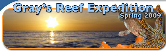 2009 Nancy Foster Cruise