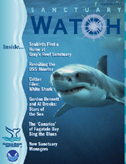 Sanctuary Watch Cover