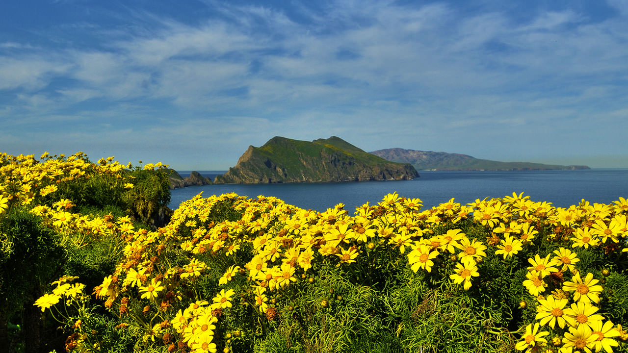 photo of anacapa island