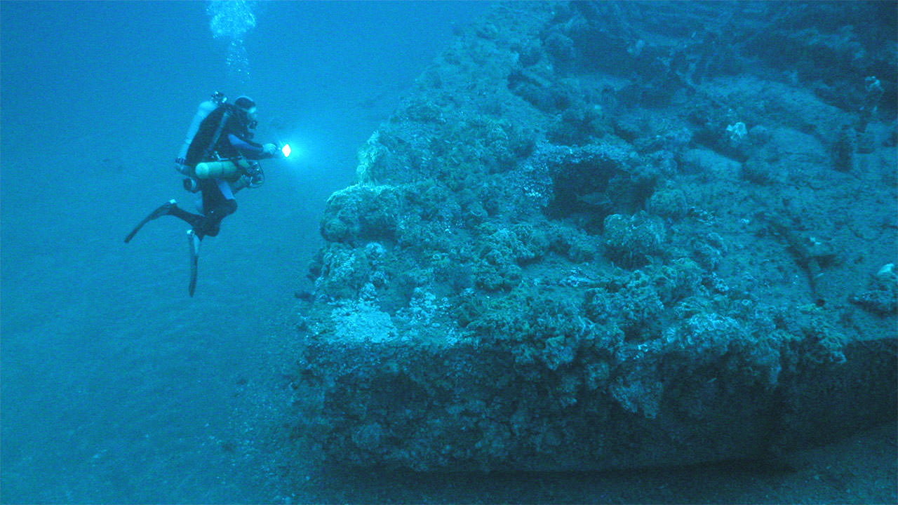 photo of diver and the monitor