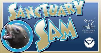 sanctuary sam logo