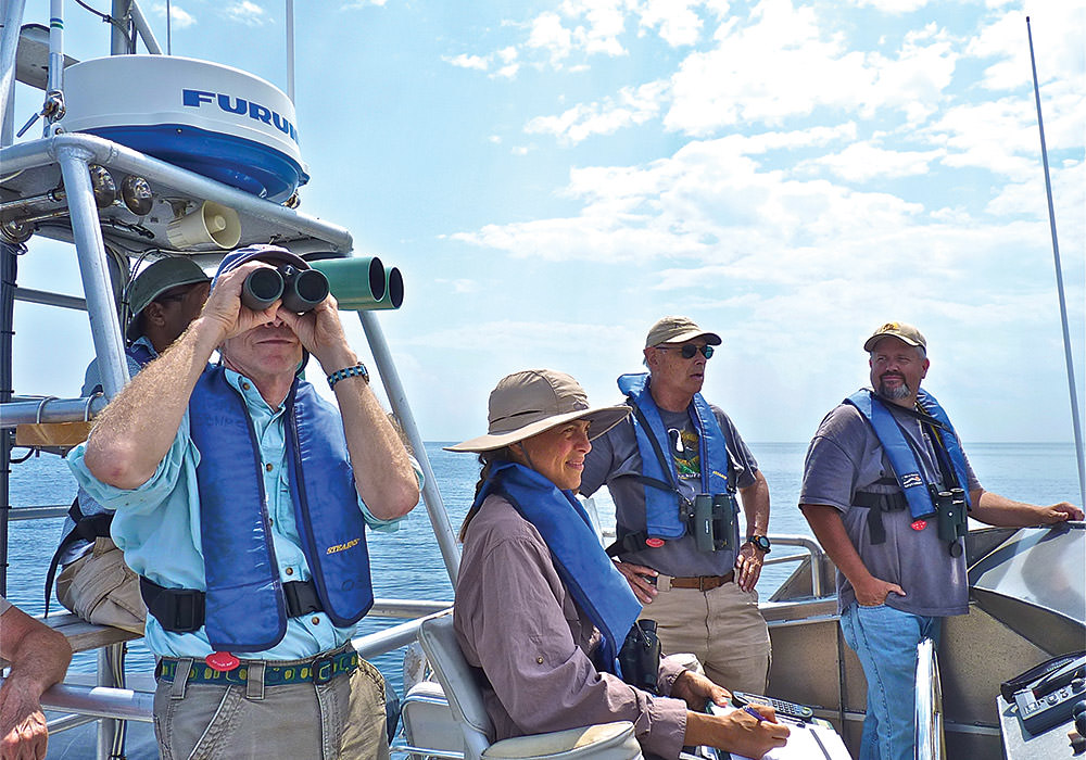 volunteers on a boat counting seabirds
