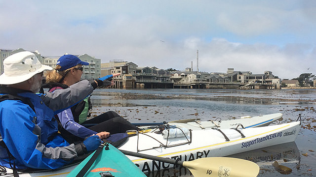 volunteers on kayaks in the water