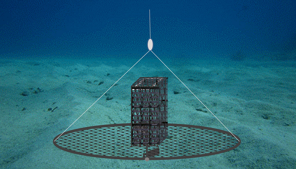 a drawing two hinged half-hoops covered in mesh netting lie open on the ocean floor
