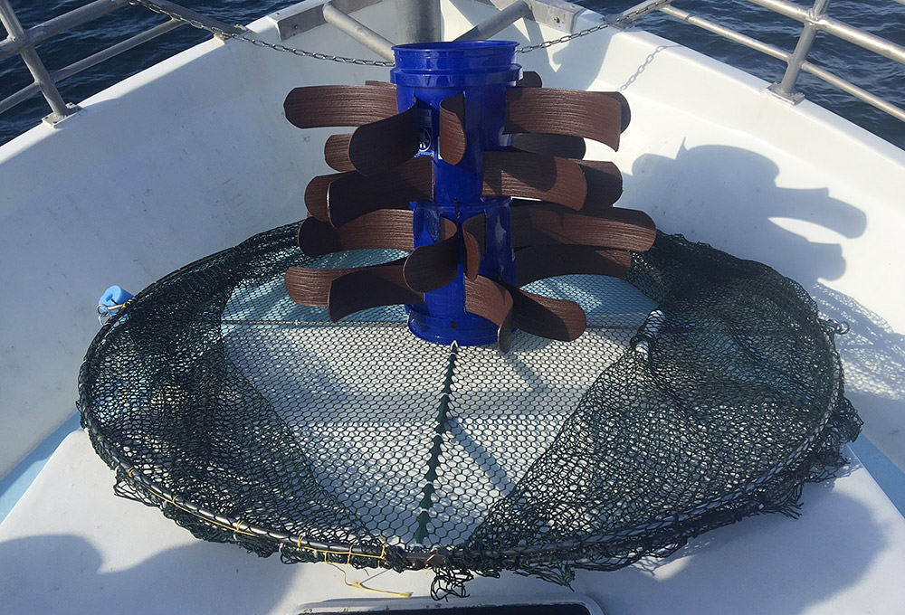 purse trap on the deck of a boat