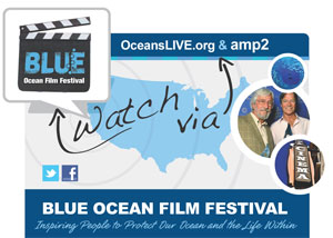 blue film festival information