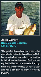 Jack Curlett Recreational Fisherman Key Largo, FL says The greatest thing about our ocean is the diversity of its inhabitants and their ability to live in such close proximity to one another in their shared environment. Each and every time I either put on a scuba tank and go under the water�s surface or sit in a boat and cast a line into the water it is a true mystery.
