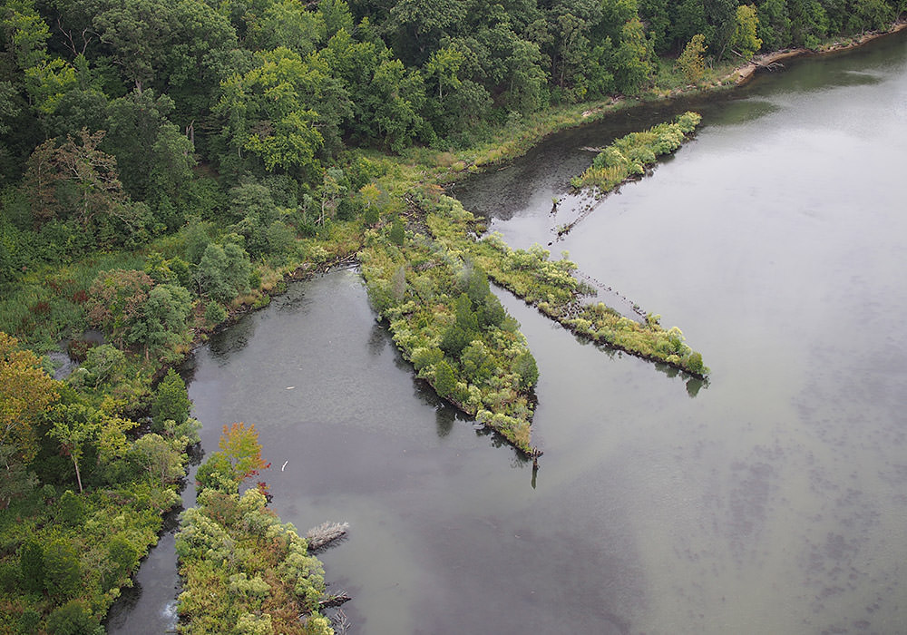 aerial view of Mallows Bay