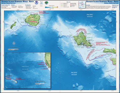 Hawaiian Island Humpback Whale north map