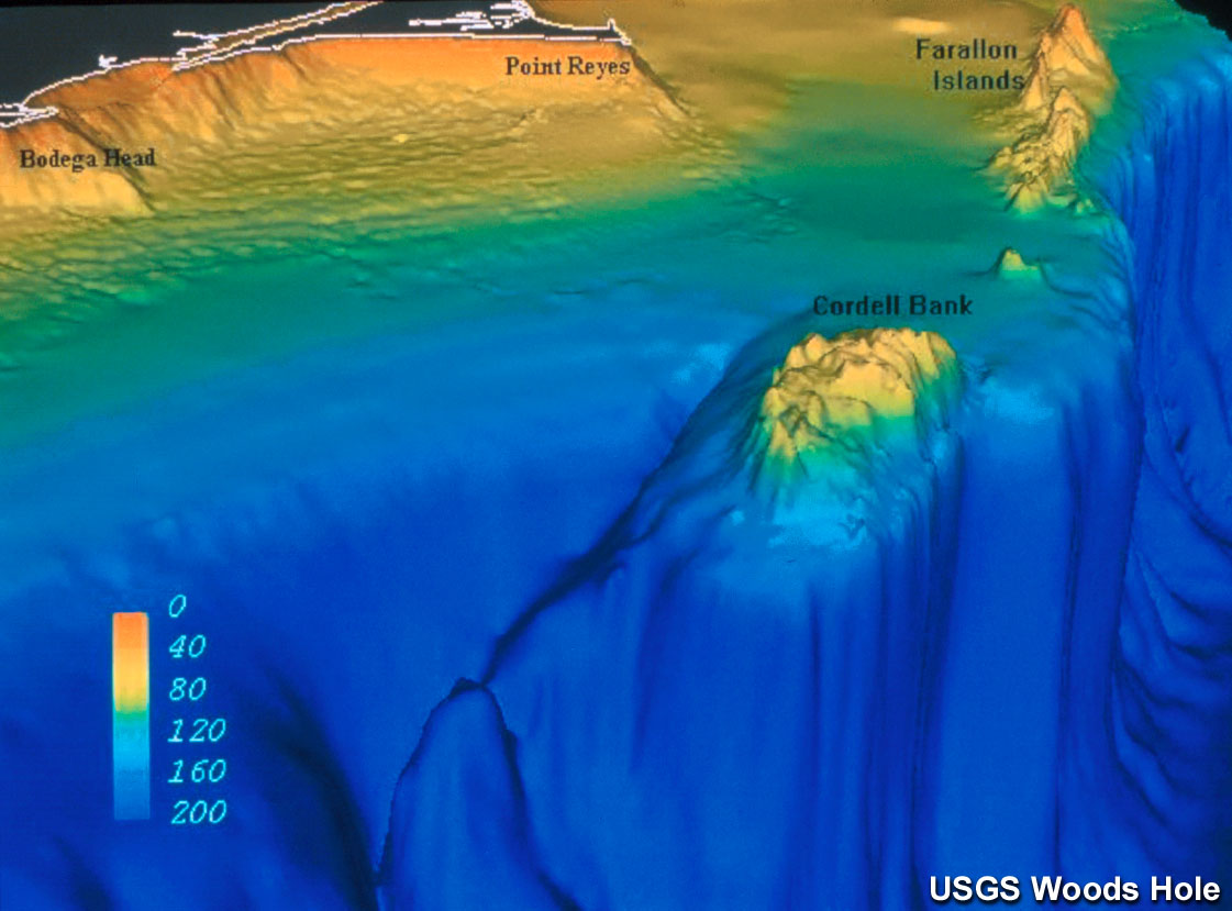Cordell Bank Nms Computer Generated 3d Bathymetry