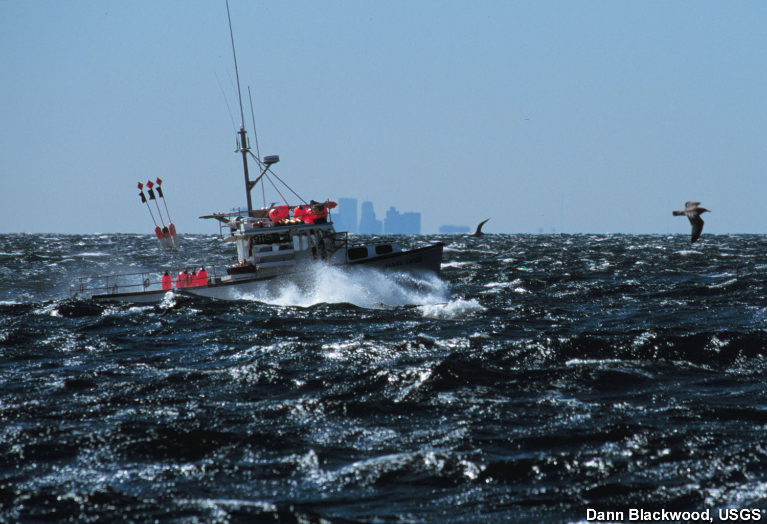 Stellwagen bank nms commercial fishing for What is commercial fishing