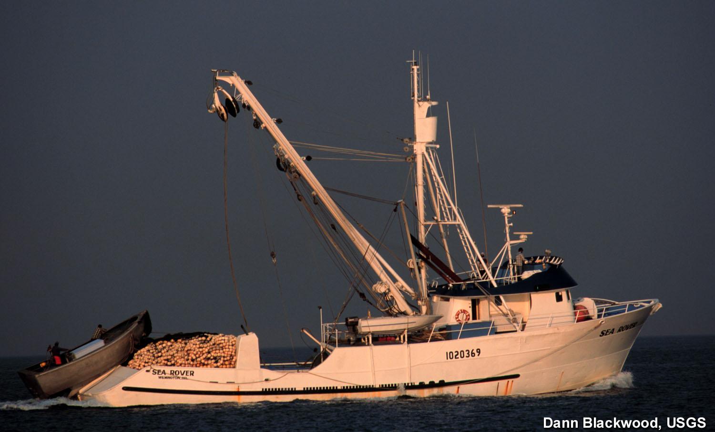 Stellwagen bank nms purse seine boat for Purse seine fishing