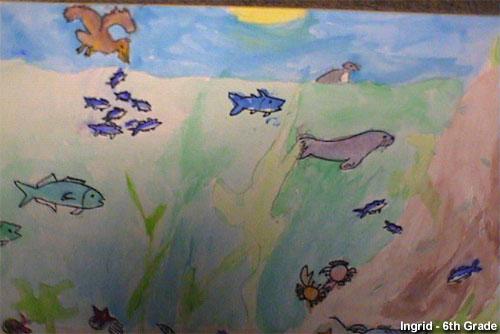 Stellwagen Bank NMS: Marine Life Drawing