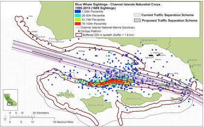 Blue whale sightings and the proposed shipping lane shift in the Santa Barbara Channel