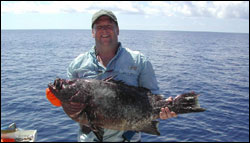 Figure 14.	Official IFGA world record and Texas state record marbled grouper (<i>Dermatolepis inermis</i>), caught July 16, 2006, at the Flower Garden Banks by Scott Anderson (pictured). Photo: John Stout
