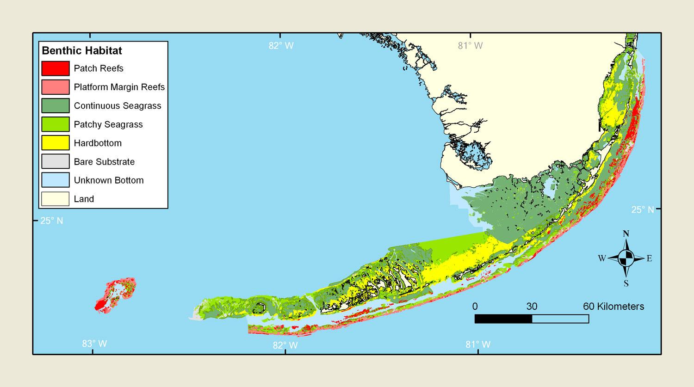 Florida Keys 2011 Condition Report