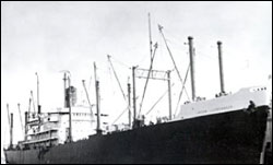 Figure 21. In 1953, the S/S Jacob Luckenbach (pictured here moored in San Francisco) collided with another vessel and sank in the Gulf of the Farallones. An estimated 300,000 gallons of bunker fuel oil were released from the sunken vessel over more than 48 years and killed at least eight sea otters and over 51,000 birds (Luckenbach Trustee Council 2006). (Photo: NOAA San Francisco Maritime National Historic Park Negative No. P82-019A0739)