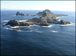 Figure 5. An aerial view of the South Farallon Islands, surrounded by Gulf of the Farallones National Marine Sanctuary. In 1909, the Farallon Islands were designated as the Farallon National Wildlife Refuge, with the exception of the Southeast Farallones, which were added in 1969. (Photo: J. Roletto, GFNMS)