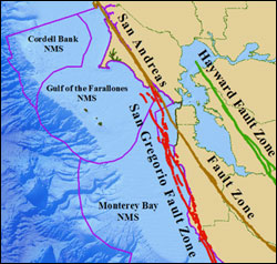 Figure 7. The San Andreas Fault Zone system within the Gulf of the Farallones region. The northerly motion of the Pacific plate, relative to the North American Plate, led to the formation of the San Andreas Fault system. (Map: T. Reed, GFNMS)