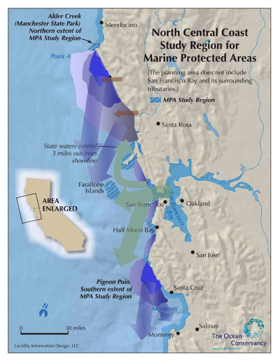 Figure 8. Schematic of major oceanographic features off the north-central California coast: Blue zones indicate upwelling centers that may be localized at capes (Point Arena, Pigeon Point) or expand along much of the coast), while blue arrows indicate plumes of upwelled waters moving south and offshore from upwelling centers. Green arrows indicate plumes of San Francisco Bay outflow, moving either south (during upwelling) or north (during weak winds or winter). Strong winter outflow from rivers like the Russian and Gualala is demarcated by brown arrows. Not shown is the retention zone in Drakes Bay and smaller zones in Bodega Bay and Half Moon Bay. These schematic patterns change with the wind, land runoff, seasons and years. (Sources: MLPA Regional Profile: J. Largier, Bodega Marine Lab, and The Ocean Conservancy 2007)