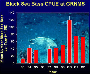 Figure 24. Black sea bass catch at Gray's Reef National Marine Sanctuary through the Marine Monitoring, Assessment and Prediction Program   South Carolina Department of Natural Resources. Source: Gray's Reef National Marine Sanctuary