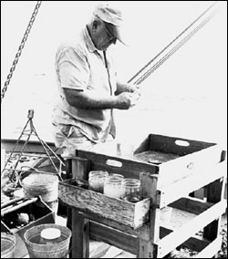 Gray's Reef was named after Milton Sam Gray, who conducted extensive biological surveys of the ocean floor off the Georgia coast. Source: Georgia Marine Institute