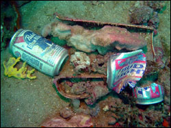 Figure 17. Marine debris is a direct result of human activities on land and at sea. Photo: Greg McFall/NOAA