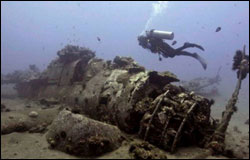 Figure 8. The sanctuary�s recently discovered naval aircraft dive site near Kihei, Maui: an SB2C-1C Curtiss Helldiver, ditched on Aug. 31, 1944. (Photo: NOAA ONMS)