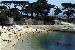 Figure 6.  The beaches of the Monterey Bay sanctuary are popular destination for sun bathers and swimmers. Photo: B. Damitz, NOAA/MBNMS