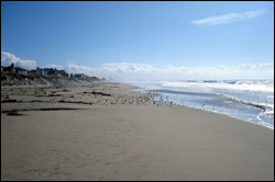 Figure 7.  Pajaro Dunes State Beach. Photo:  J. Pederson, NOAA/MBNMS/SIMoN