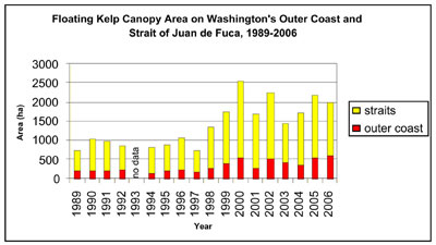 Figure 23. Annual floating kelp canopy area since 1989 along the Washington coast and the Strait of Juan de Fuca. (data from WDNR)