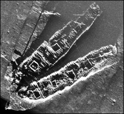 Sonar image of the Frank A. Palmer and Louise B. Crary shipwrecks.