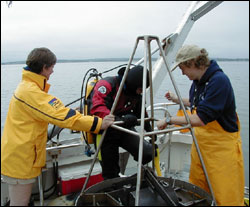 Scientists from the Marine Biological Laboratory in Woods Hole monitor sediment metabolism for the Massachusetts Water Resources Authority.