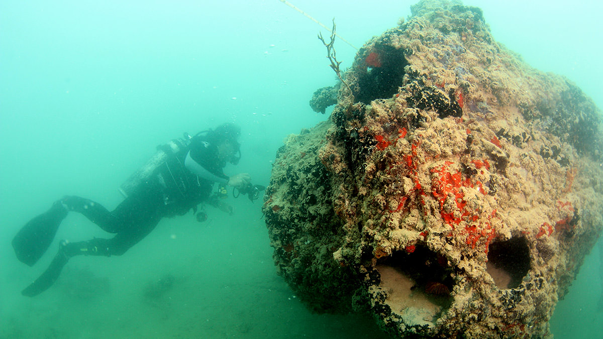 diver examining the pby-5 wreck