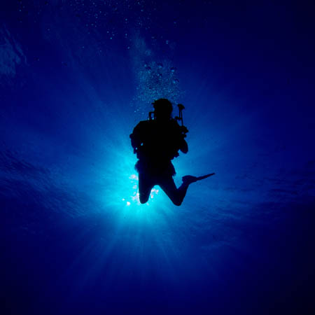 diver in the water with light shining down from above