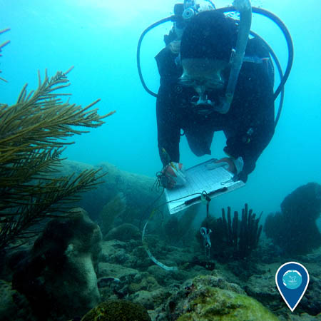 diver writing on a clipboard