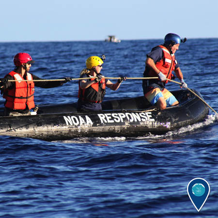 sanctuary responders on boat removing marine debris from a whale