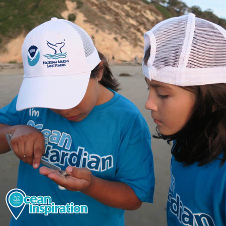 kids examining items they found on the beach