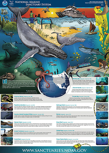 screenshot of the national system of marine sanctuaries brochure