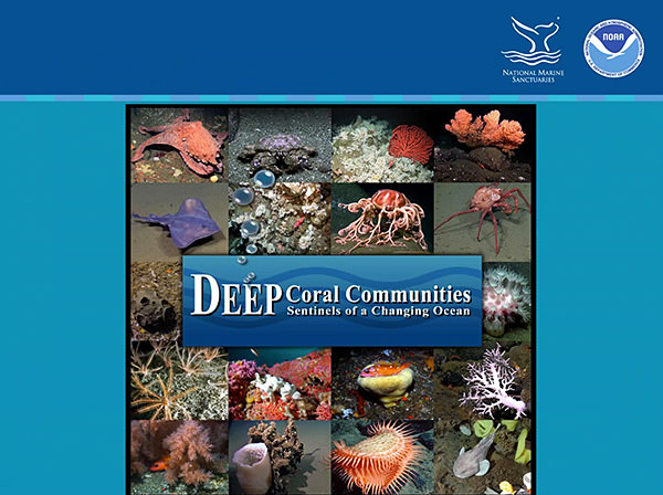 deep coral communities poster